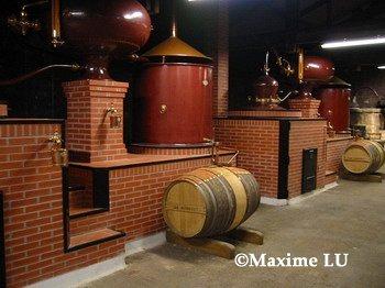 cognac2002C