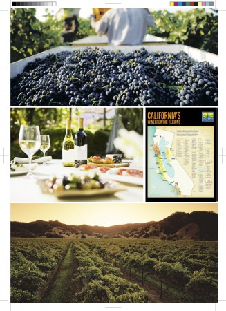 p48-51 加州-葡萄酒2