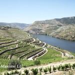 小谈葡萄牙的特色产区和品种