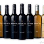 陆江乱语之中国葡萄酒市场又步入春秋战国时代